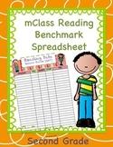 mClass Data Spreadsheet for Second Grade