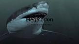 megalodon info