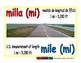 mile/milla meas 1-way blue/rojo