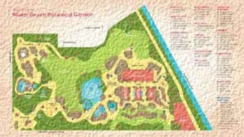 my garden 138