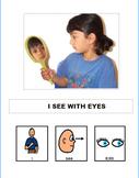 my senses-interactive book