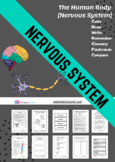nervous system and brain anatomy worksheets and notebook i