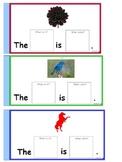 noun color sentences 2