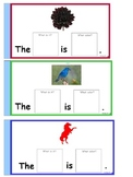 noun color sentences 2