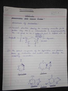 nucleotides structure