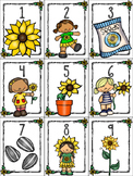 numeral cards to 1 to 20: set 7