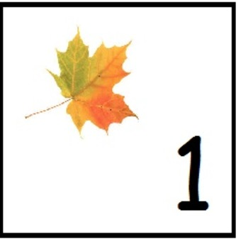 numbers with leafs