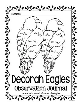 observation journal: decorah eagles