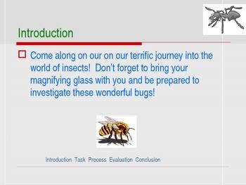 official bug investigators webquest