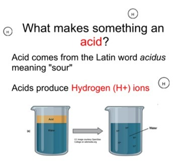 pH Bundle!