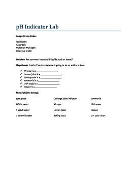 pH Indicator Lab with Cabbage Juice