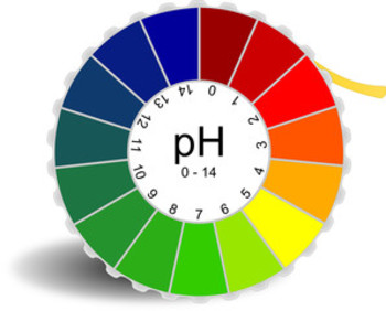 pH Lab Report