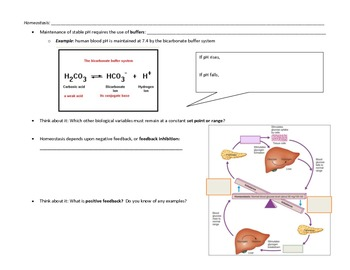 pH and homeostasis