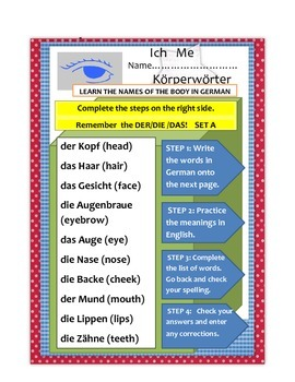 parts of the body in German. Körperwörter.   THE PARTS OF THE  BODY  IN GERMAN