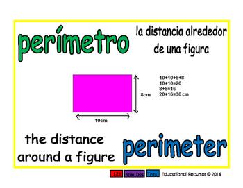 perimeter/perimetro geom 1-way blue/verde