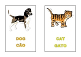 pets vocabulary flascards - bilingual (portuguese-English)