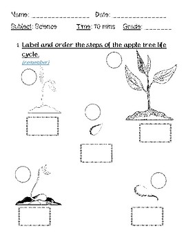 plant and animal life cycles