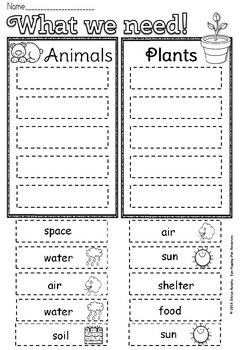 plant and animal needs freebie by eye popping fun resources tpt. Black Bedroom Furniture Sets. Home Design Ideas
