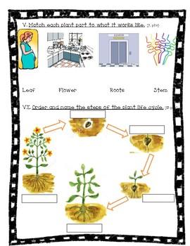 plant unit test