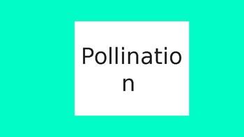 pollination, fertilisation and germination powerpoint
