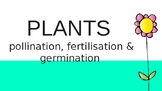 pollination, fertilisation and germination powerpoint
