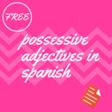 possesive adjectives in spanish worksheet