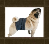 pug large toy breed size dog diaper wrap belly band sewing pattern pdf download