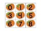pumpkins bundle: math, science and literacy activities