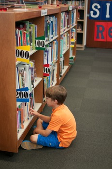 Stock Photo: Student in the Library #10 -Personal & Commer