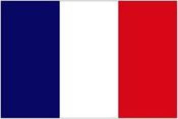 regular -er verbs French - all in target language
