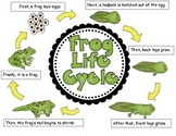 science center frog chart
