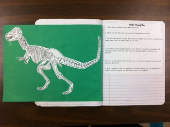 science reading interactive notebook build a dino lab fossils elementary jr high