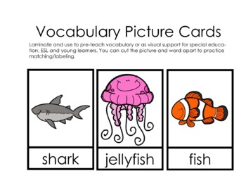 """Sight Word Practice Book and Emergent Reader-""""see"""""""
