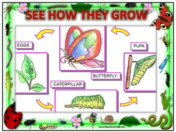 see how they grow