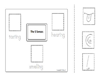 sense of hearing, tasting, smelling 5 senses graphic organizer