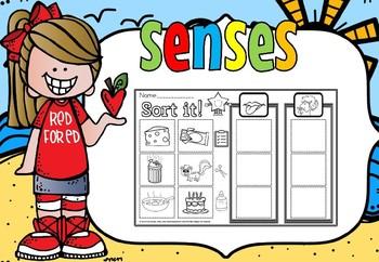 senses sample (free)