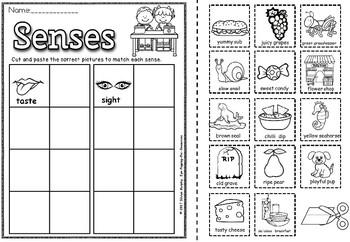 senses sort(FREE sheet in preview)
