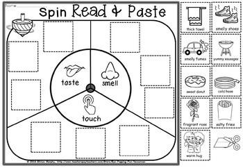 senses spin