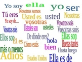 ser and subject pronoun moving matamoscas