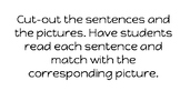 short e CVC sentence and picture match