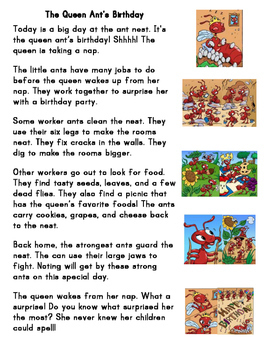 First Grade Balanced Reading Passages (4)