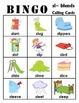 sl- blends BINGO + 12 bonus pages of sl- vocabulary words