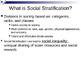 Social Stratification Lesson