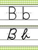 spring PAISLEY - Classroom Decor - Alphabet, Handwriting, ABC print, D'Nealian