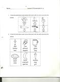 system 44 lesson 3