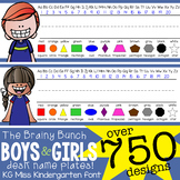 the BRAINY BUNCH - BOYS & GIRLS -  Student desk nameplates - BUNDLE