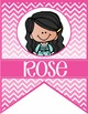 the BRAINY BUNCH - GIRLS - CLASSROOM Character BANNER - bright colors