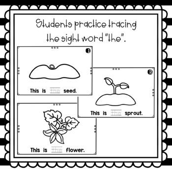 This Is the Pumpkin- emergent reader