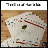 timeline of early hominids