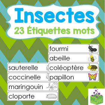 Insectes Étiquettes mots